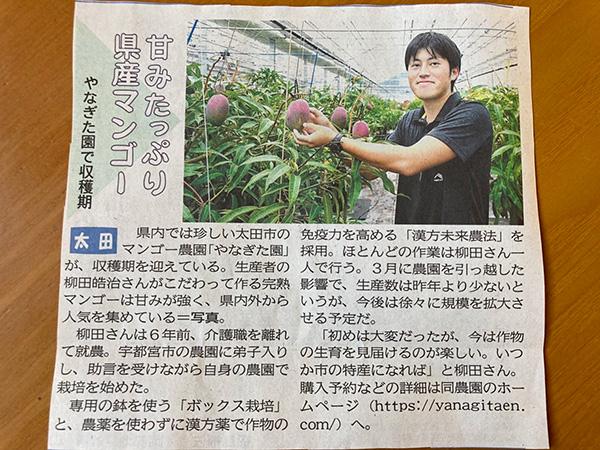 やなぎた園さん 上毛新聞に掲載された記事です